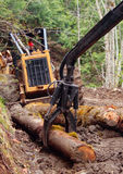 Loading arm with Skidder. Claw arm from self-loading log truck picking up logs. with skidder Stock Images