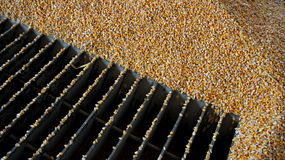 Loading Corn into the Silo Royalty Free Stock Photos