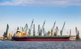 Loading with cranes of industrial cargo ship in Varna Stock Images