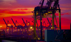 Port Loading Cranes in the Pre dawn Light Stock Image