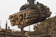 Loading cut wooden logs Stock Photos