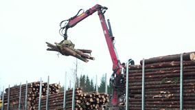 Loading of felled trees. Finland, November 2017 - Man with special crane equipment load truck trailer with wood logs stock video footage