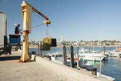 Loading from fishing boat. Stock Photos