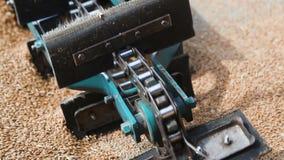 Loading of grain mechanically. Transporting belt mechanism stock video