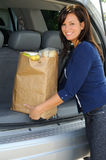 Loading Groceries Stock Photography