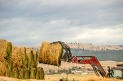 Loading Hay Bales Royalty Free Stock Photography