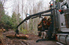 Loading Logs 03. Loading logs on logging truck with self attached claw arm Stock Images