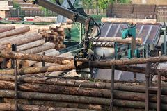 Loading of logs on transport Stock Image
