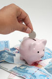 Loading a piggy bank Royalty Free Stock Image