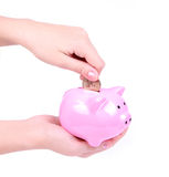Loading a piggy bank isolated on white Royalty Free Stock Images