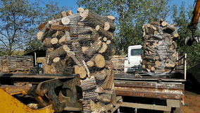 Loading prepared firewood. With forklift into the truck trailer,video clip stock video