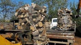 Loading prepared firewood stock video