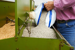 Loading seeding machine with wheat seeds and fertilizer Royalty Free Stock Photo