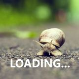 Loading. Small brown snail. Stock Photo