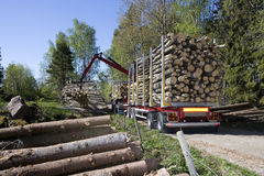 Loading Timber Royalty Free Stock Photos