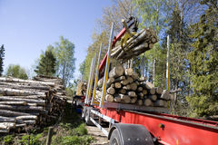 Loading Timber Stock Photos