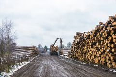 Loading timber on truck, 18 November 2017, village Bushmanova, I. Village Bushmanova, Ivanovo oblast, Russia – November 18, 2017. Loading timber on truck Stock Images
