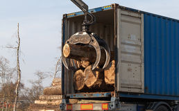 Loading of trees in a truck Royalty Free Stock Images