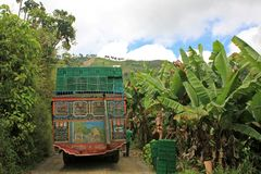 Loading truck with bananas for transporting, near El Jardin Antioquia, Colombia royalty free stock images