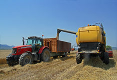 Loading wheat after harvest. Harvested wheat a summer day royalty free stock images