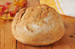 Loaf of artisan whole wheat bread Stock Image