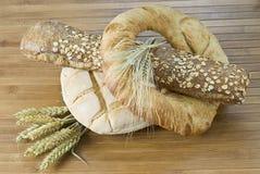 Loaf, bagel and baguette. Stock Image
