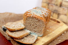 Loaf of bread. Dirt, germs, mess and worms Royalty Free Stock Images