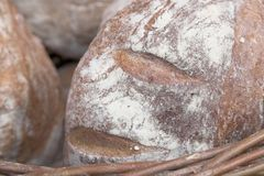 Loaf of Bread. A close-up image of floury loaves of bread in a wicker basket Royalty Free Stock Photos