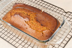 Loaf of bread. Pumpkin spice bread hot out of the oven cooling on a rack Stock Photos