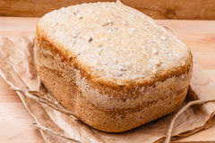 Loaf of bread on backing paper Royalty Free Stock Image