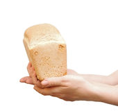 Loaf of bread in children hand Stock Images