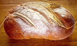 Loaf of bread with earned cereals Stock Images