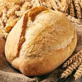 Loaf of bread with ears of wheat. Closeup Stock Images