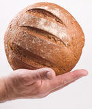 Loaf of bread on hand royalty free stock photo