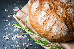 Loaf of bread with rosemary salt and pepper on paper Stock Photos