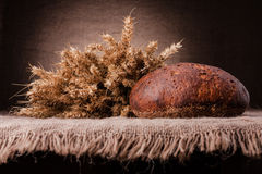 Loaf of bread and rye ears still life Stock Images