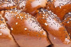 Loaf of bread with seeds Royalty Free Stock Photo