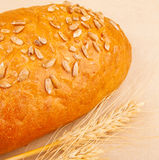 Loaf of bread with seeds Royalty Free Stock Photography