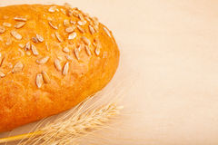 Loaf of bread with seeds Royalty Free Stock Image
