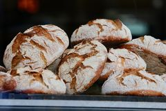Fresh loafs of bread in bakery Royalty Free Stock Images