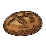 Loaf of bread. Vector black hand drawn vintage engraving. Rye bread. Vector black hand drawn vintage engraving illustration for poster, label and menu bakery royalty free illustration