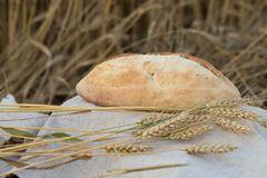 A loaf of bread is a wheat ears