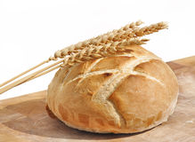 Loaf of bread and wheat ears Stock Photography
