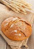 Loaf of bread with wheat ears Stock Photography