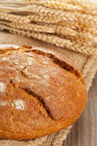 Loaf of bread with wheat ears Royalty Free Stock Photos