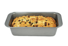 Loaf of chocolate chips and walnut bread Royalty Free Stock Images