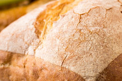 Loaf ciabatta bread Royalty Free Stock Photography