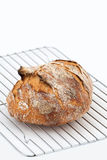 Loaf of crusty bread. On a wire rack Stock Photography