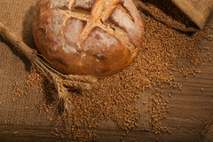 Loaf of fresh bread Royalty Free Stock Images