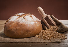 Loaf of fresh  bread Royalty Free Stock Photo